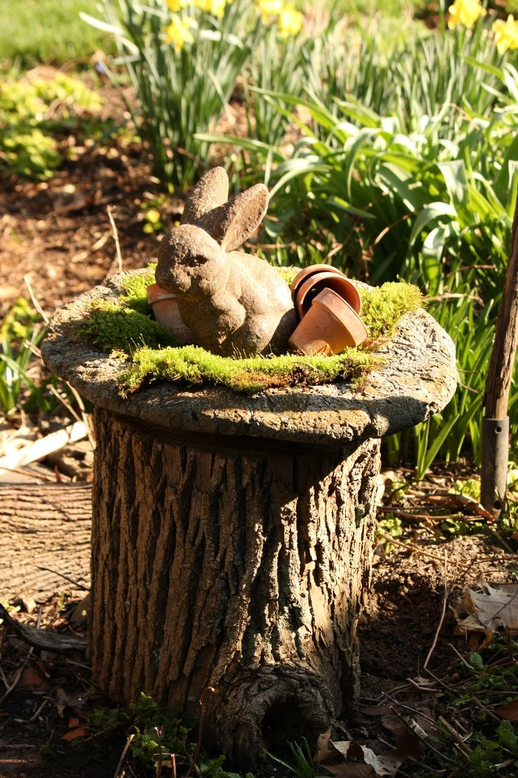 The 20 Best Images About Gardening Tree Stump Ideas On Pinterest