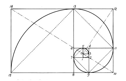 25+ best ideas about Golden Ratio Examples on Pinterest