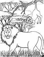 afrika malvorlagen   Afrika Tiere Applikationen Patches ...