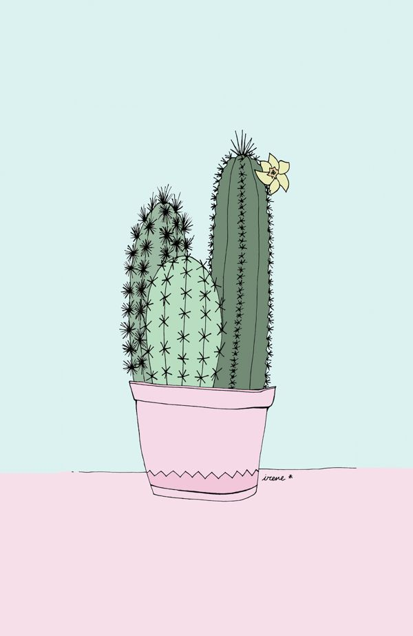 Cactus illustrations by Irene Cabrera Lorenzo. Theres something beautifully feminine about the style.