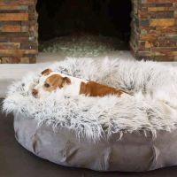 25+ Best Ideas about Dog Beds on Pinterest | Pet beds, Dog ...