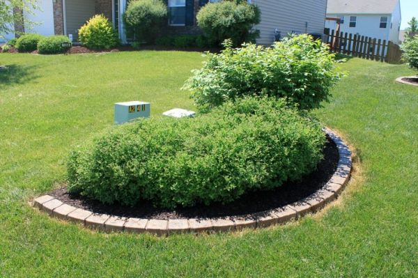 landscaping cover utility boxes