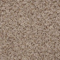 Frieze carpet, Carpets and Dallas on Pinterest