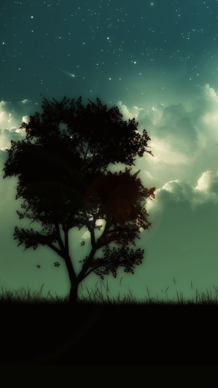 Manly Fall Wallpaper Starry Shiny Cloudy Skyscape Lonely Tree Night Hill Iphone