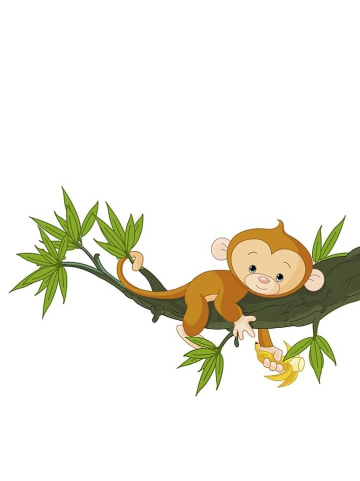 Monkeys And Bananas Cute Wallpaper 161 Best Images About Monkeys Primates On Pinterest