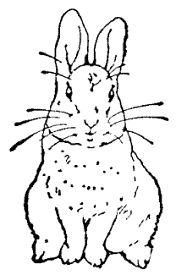 819 best images about Beatrix Potter Illustrations on
