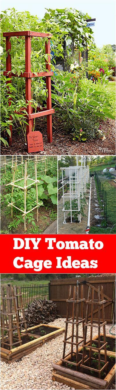 25 Best Ideas About Tomato Garden On Pinterest Tomatos Or