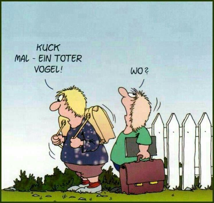 Die 26 besten Bilder zu Uli Stein  Cartoons  auf