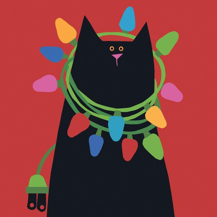 Best 25 Black Cat Images Ideas On Pinterest Black Cat
