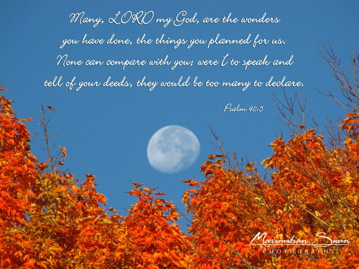 New England Fall Themed Wallpaper 10 Best Images About Autumn Bible Verses On Pinterest
