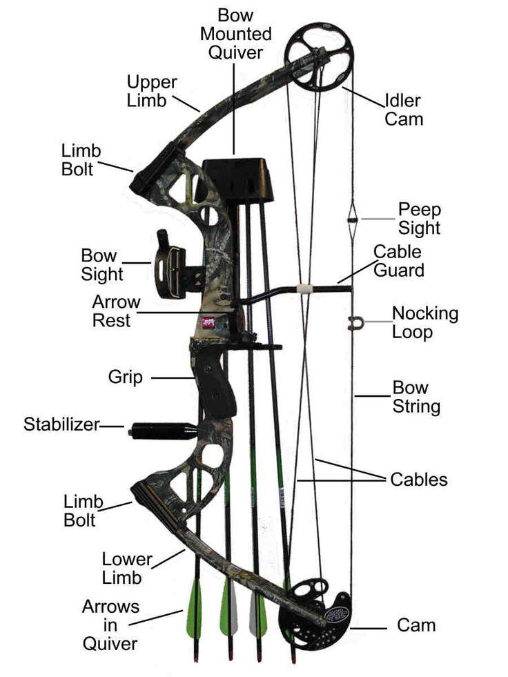25+ best ideas about Compound Bow Parts on Pinterest