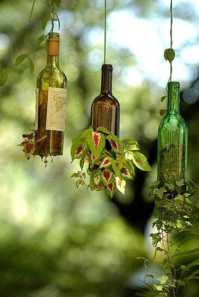 25 Best Ideas About Wine Bottle Garden On Pinterest Cutting