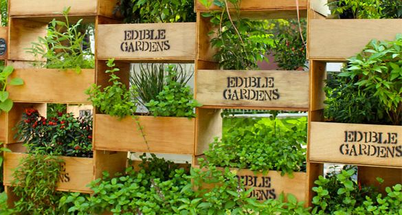 Garden Design Garden Design With Backyard Edible Garden Design