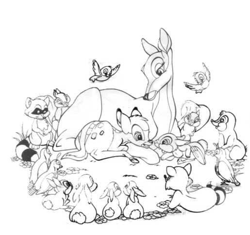 Guarda tutti i disegni da colorare di Bambi www