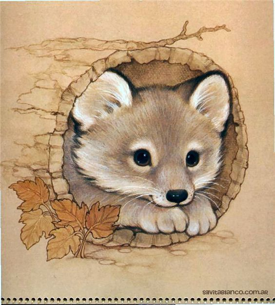 Cute Chubby Babies Wallpapers 312 Best Images About Foxes Drawings And Paintings Of Fox