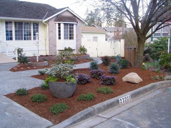 grass landscaping