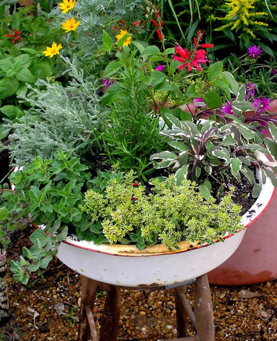 The 263 Best Images About Fab Ideas For Herb Containers On