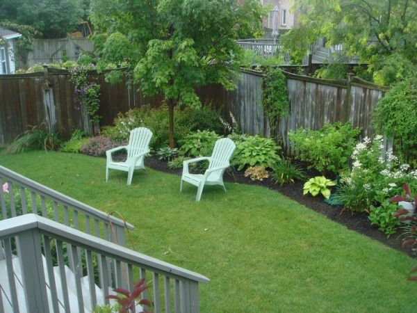 side yard july 2010