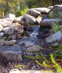 23 best ideas about Waterless ponds on Pinterest ...