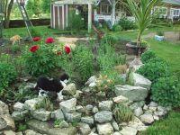 small rock garden ideas need ideas for rocks birds blooms ...