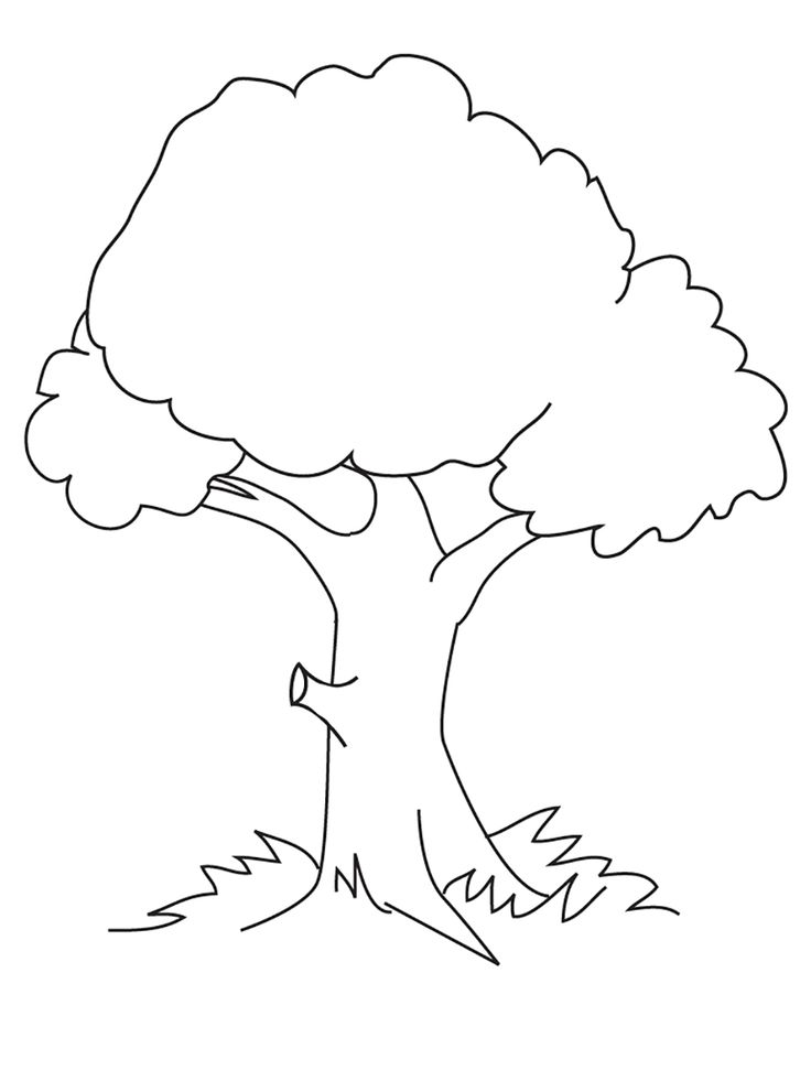 17 Best images about trees coloring pages on Pinterest