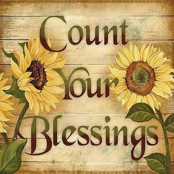 count blessing sunflower wall