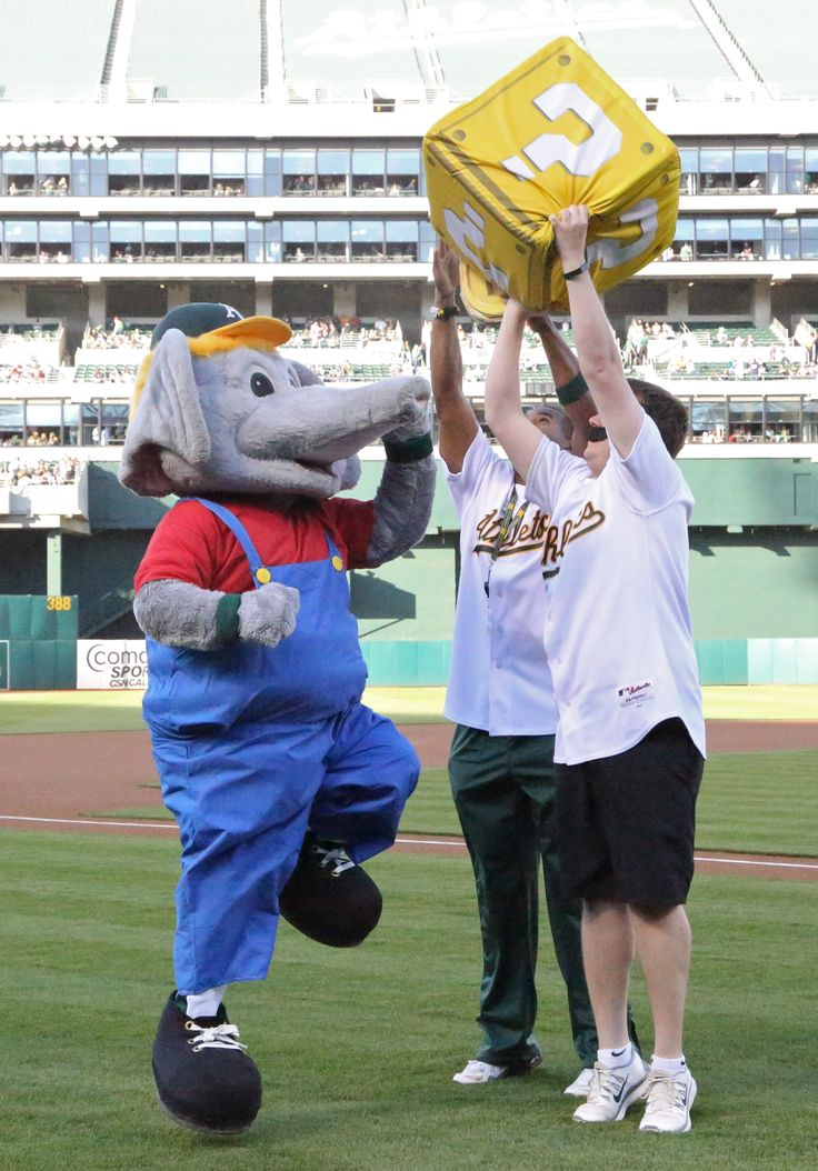 21 Best Images About Stomper's Scrapbook On Pinterest