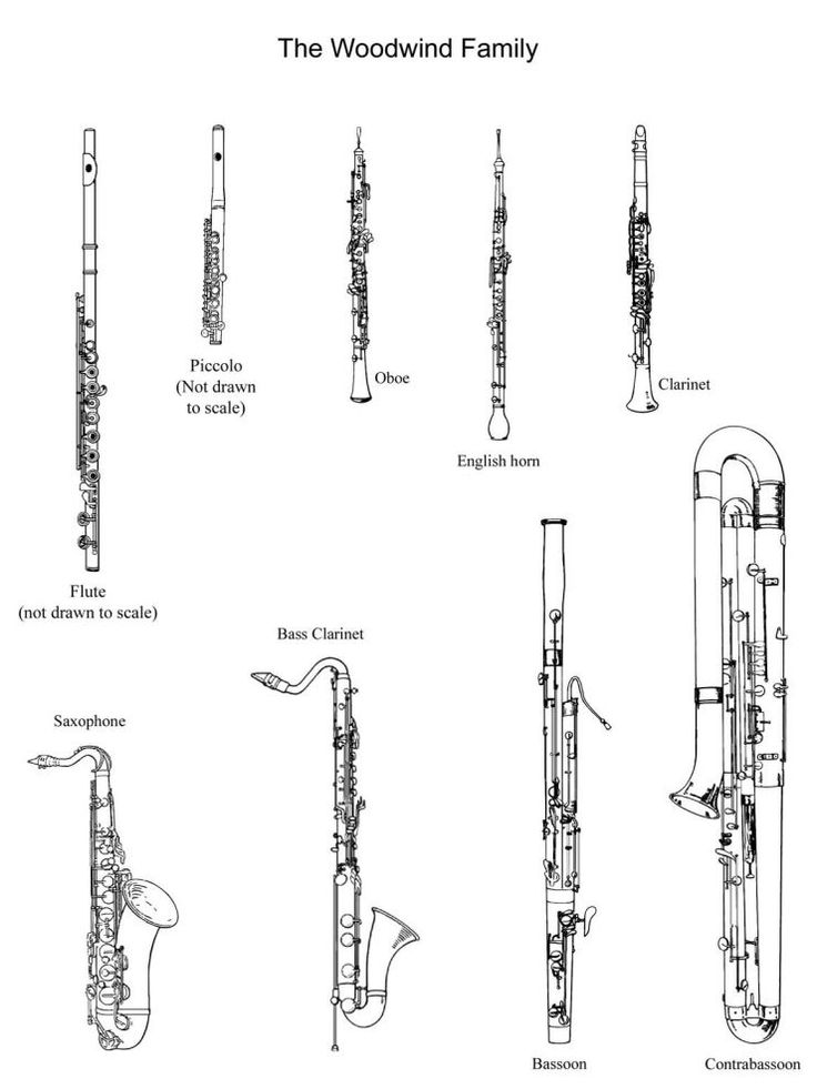 25+ best ideas about Woodwind instrument on Pinterest