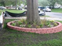 Low retaining wall around tree, with slope in yard ...