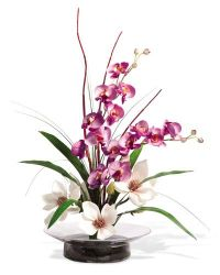 1000+ ideas about Artificial Orchids on Pinterest | Orchid ...