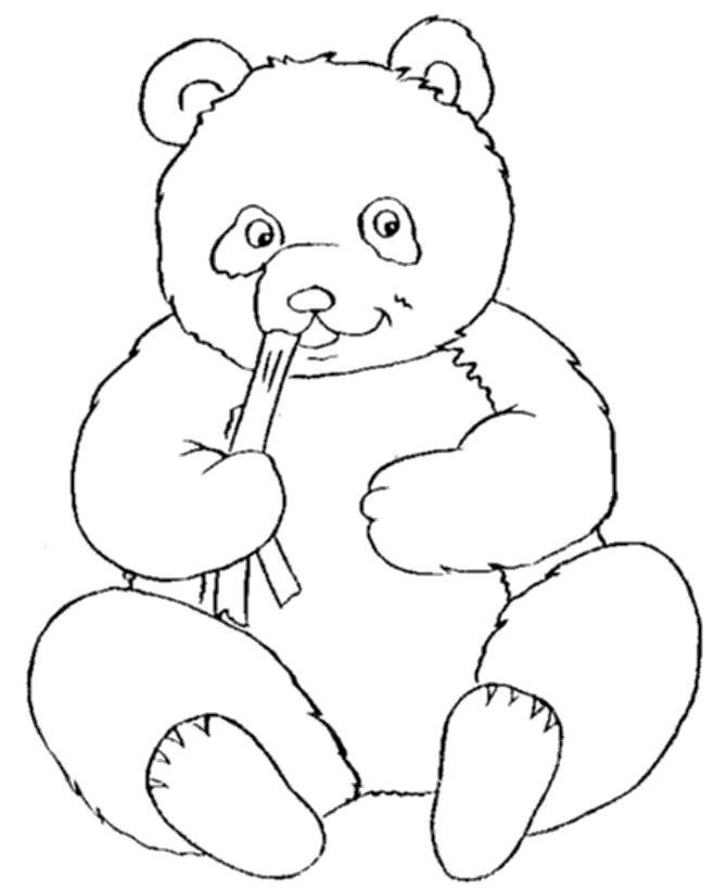17+ best ideas about Panda Bear Crafts on Pinterest