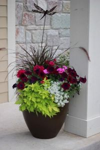 25+ best ideas about Front porch planters on Pinterest