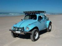 240 best images about Serious Baja Bug on Pinterest