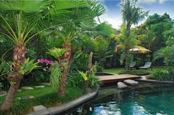 1083 tropical