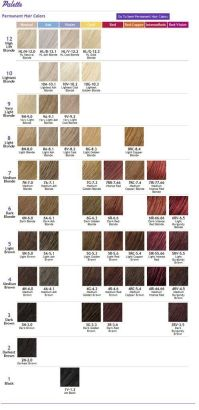 ION COLOR BRILLIANCE CHART | Hair color or cut ideas ...