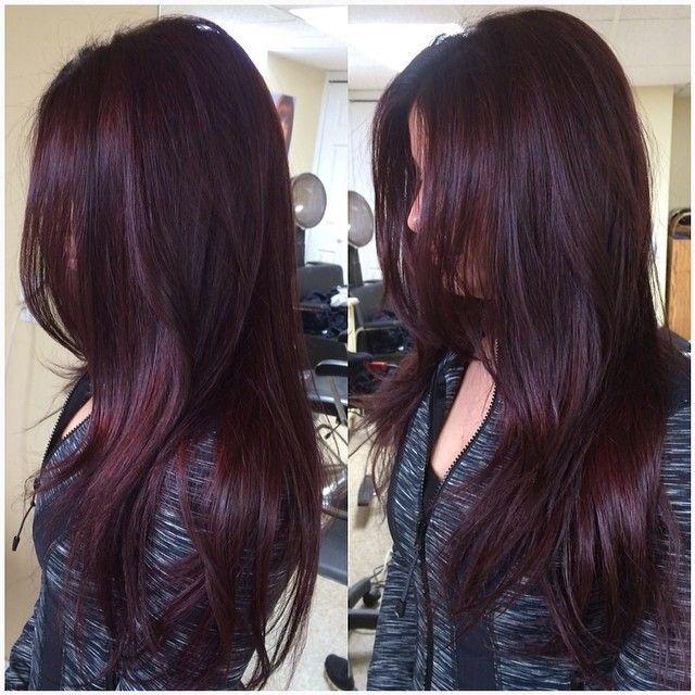 Best 25+ Violet brown hair ideas on Pinterest