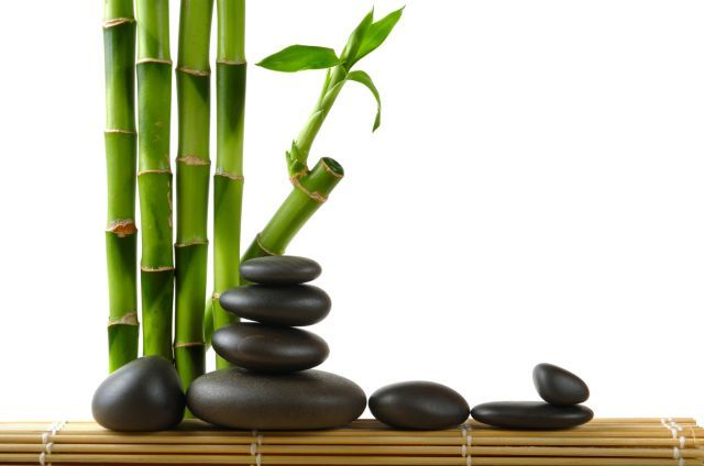 Detalles zen para decorar el bao Yo tengo el Bamb de la