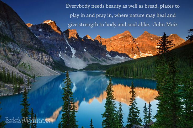 John Muir Quotes Wallpaper Quot Everybody Needs Beauty As Well As Bread Places To Play