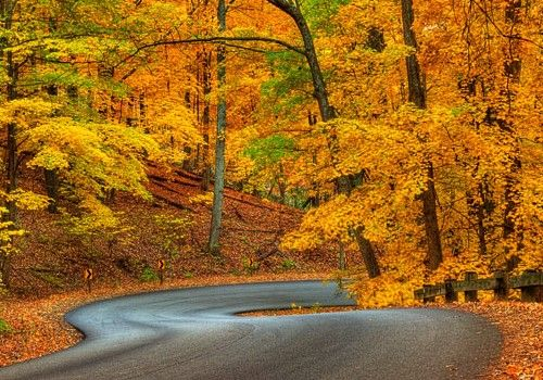 Fall Nature Scenes Wallpaper Brown County State Park Nashville Indiana Is On The