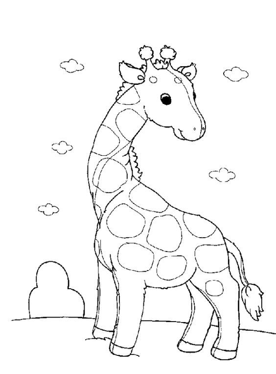 17 Best ideas about Preschool Coloring Pages on Pinterest