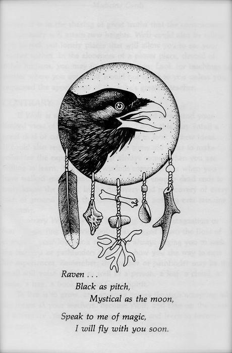 96 best crow images on Pinterest
