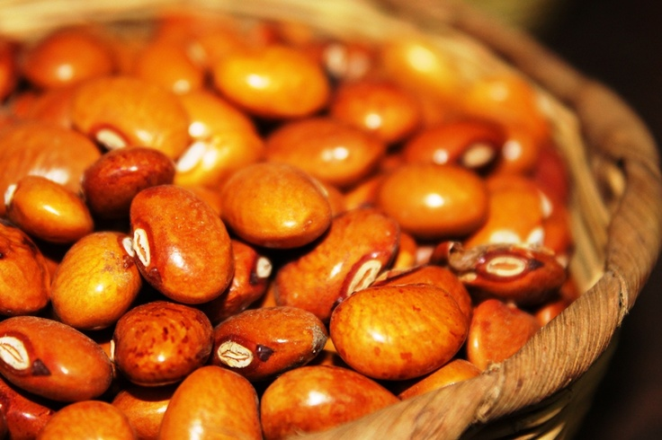 1000 images about Comida guatemalteca recetas on