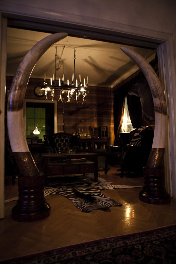 british colonial chair u shaped 17 best ideas about trophy rooms on pinterest | hunting rooms, deer mounts and rustic man cave