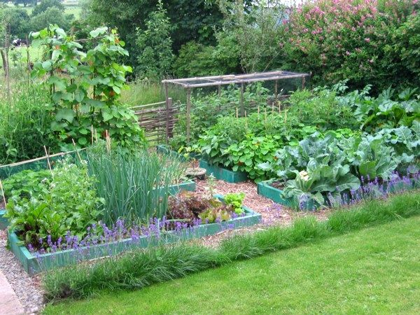 17 Best Images About Permaculture On Pinterest Gardens Farm