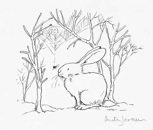 17 Best images about Anita Jeram, Illustrator on Pinterest