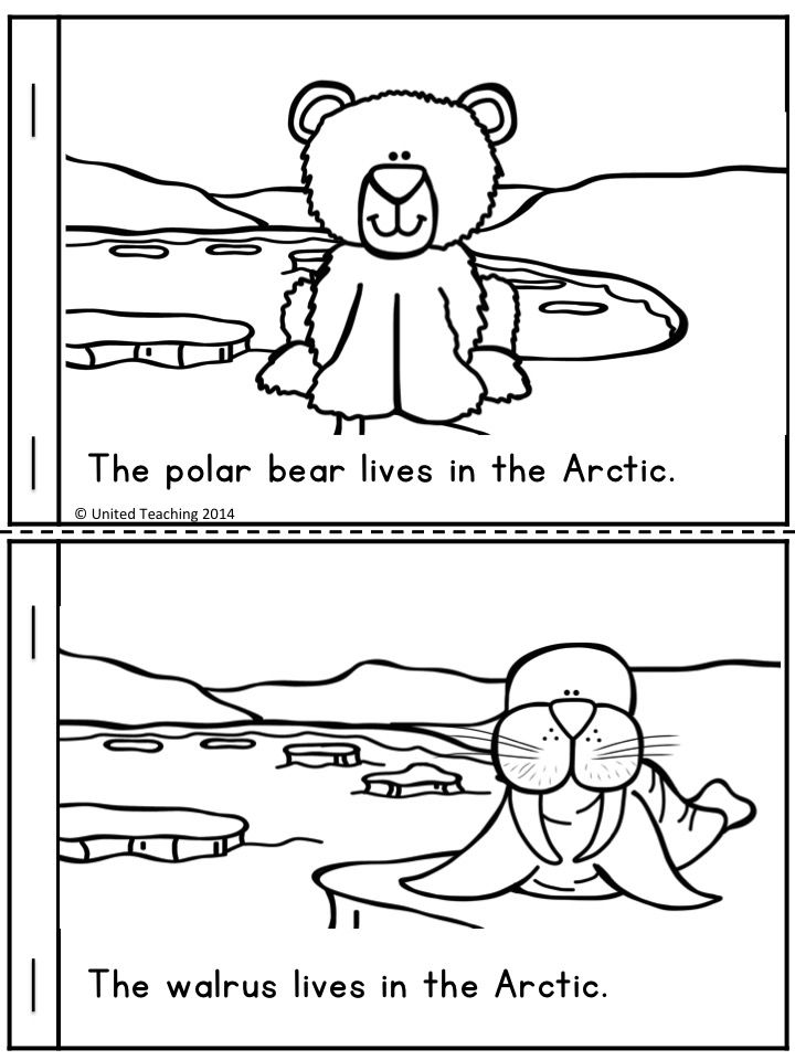 255 best images about Arctic and Polar for Preschool on