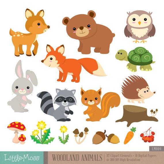 20 Best Images About Woodland Creatures Clipart On