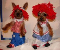 84 best images about RAGGEDY ANN AND ANDY on Pinterest