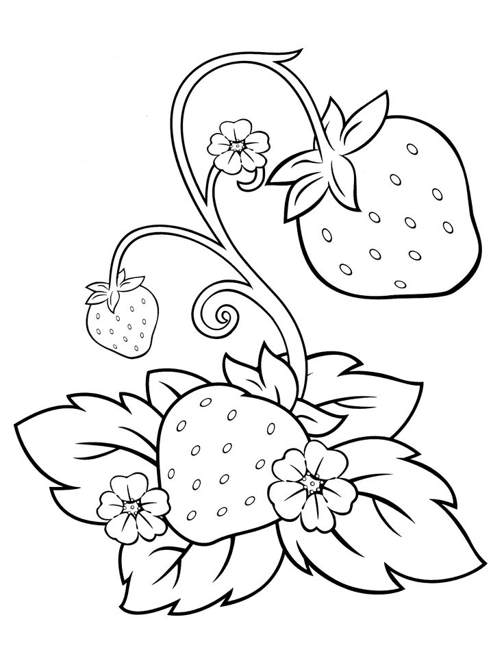 Best 10+ Strawberry shortcake cartoon ideas on Pinterest