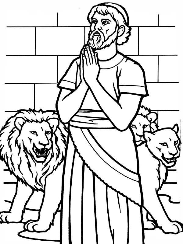 174 best images about Bible: Daniel (& SMA) on Pinterest